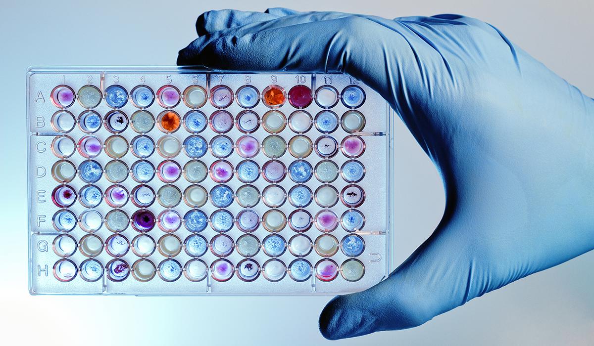 polypropylene-microplate-assay-small-wells-medical